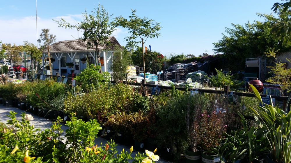 Photo Of Armstrong Garden Centers San Go Ca United States Nursery