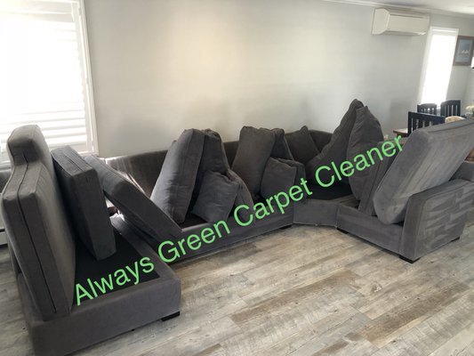 Always Green Carpet Cleaner 229 94th St Brooklyn Ny Rug Cleaners Mapquest