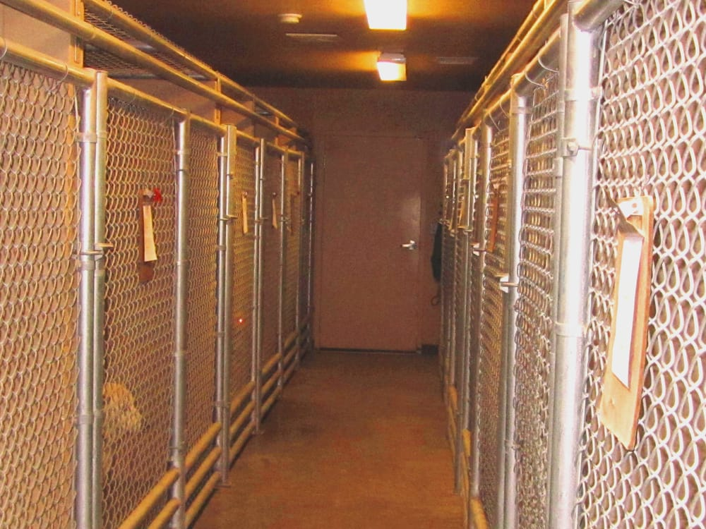 Bar S Animal Clinic: 3920 Industrial Rd, Wickenburg, AZ