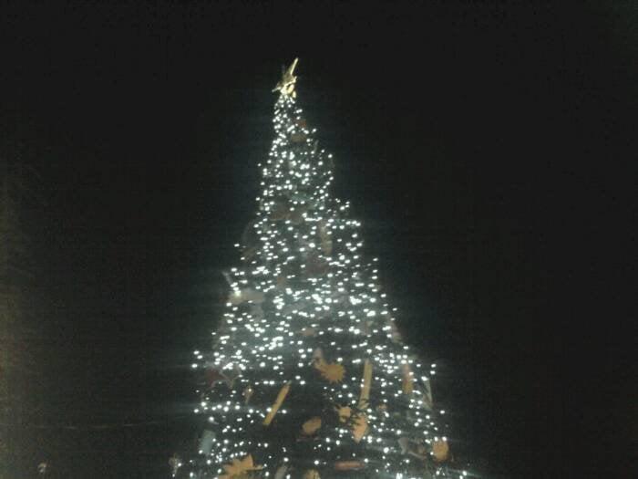 The Alamo Christmas Tree