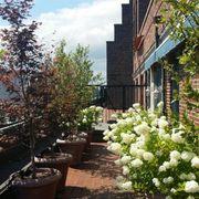 mini photo of chelsea garden center williamsburg williamsburg ny united states - Chelsea Garden Center