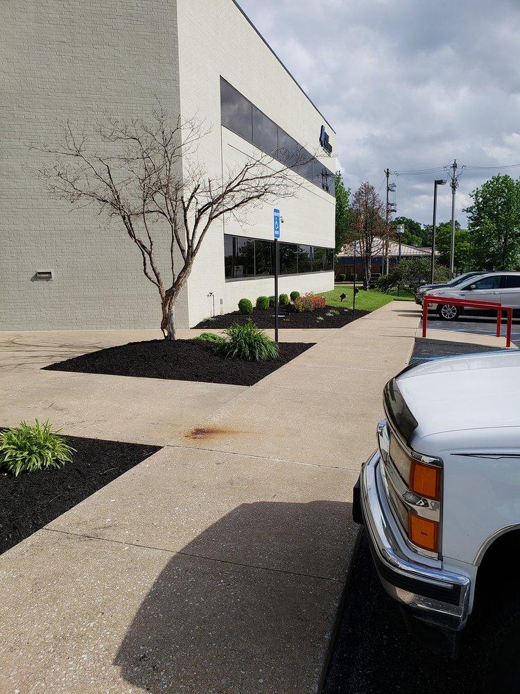 Royal Lawns Landscape Management: Cape Girardeau, MO