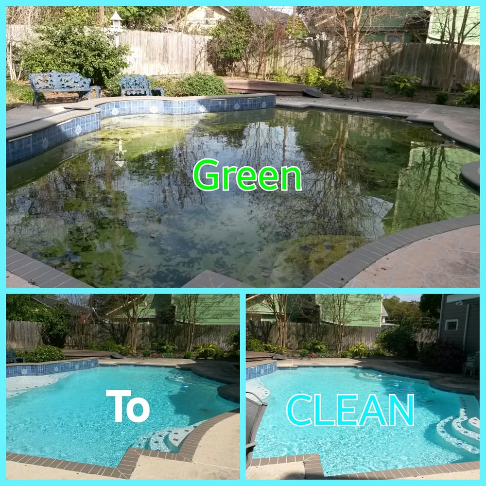 Pool Cleaning In Houston : Never settle with algae yelp