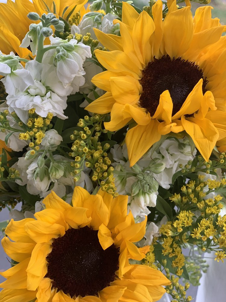 The Flower Stop: 1146 Memorial Ave, West Springfield, MA