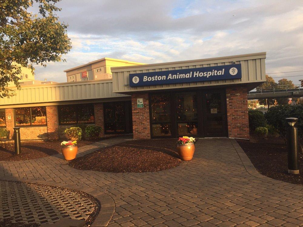Boston Animal Hospital