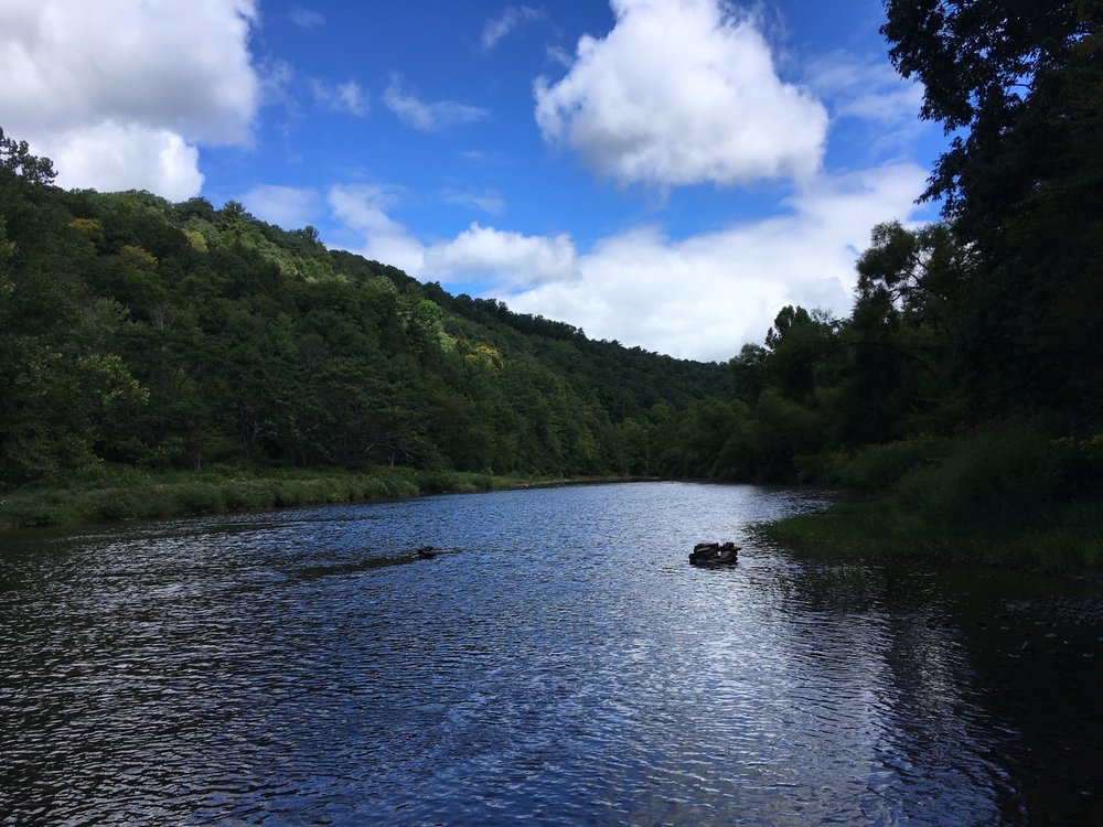 Allegheny National Forest: Kane, PA