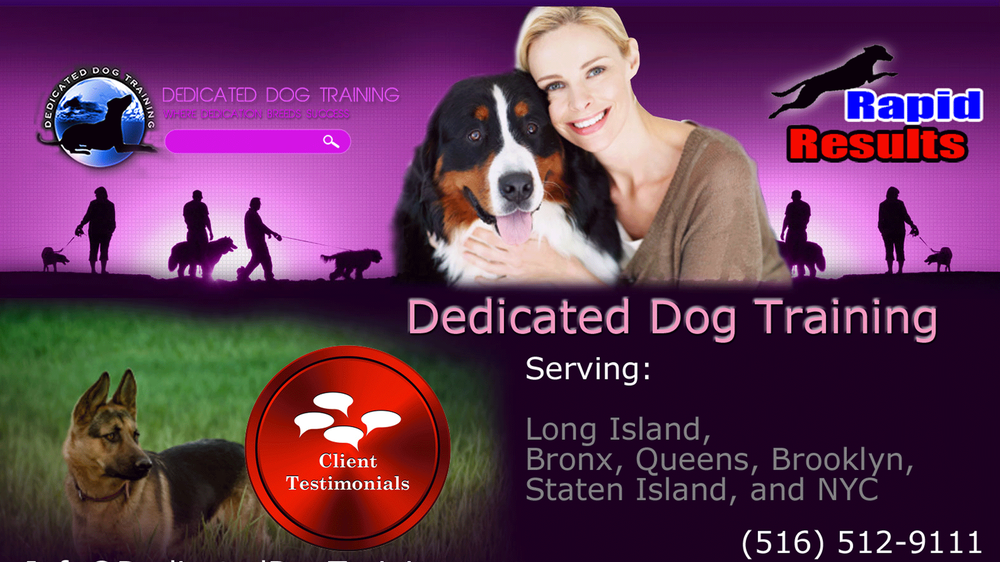 Top Dog Training Levittown Ny