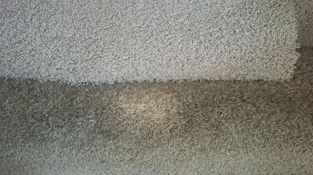 Inland Empire Carpet Repair And Cleaning Carpeting