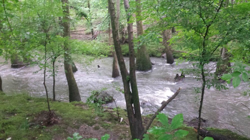 Rock Creek Trail: Little Rock, AR