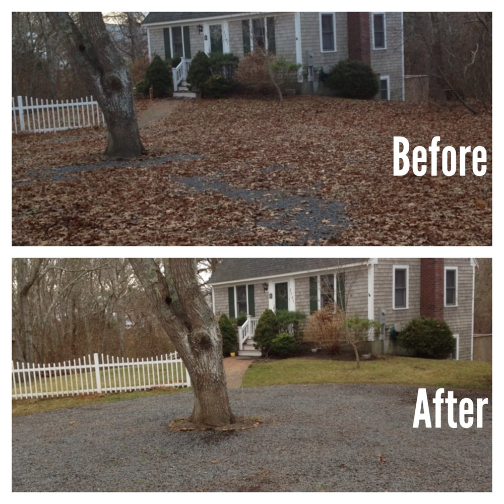 Fall Clean Up Before And After