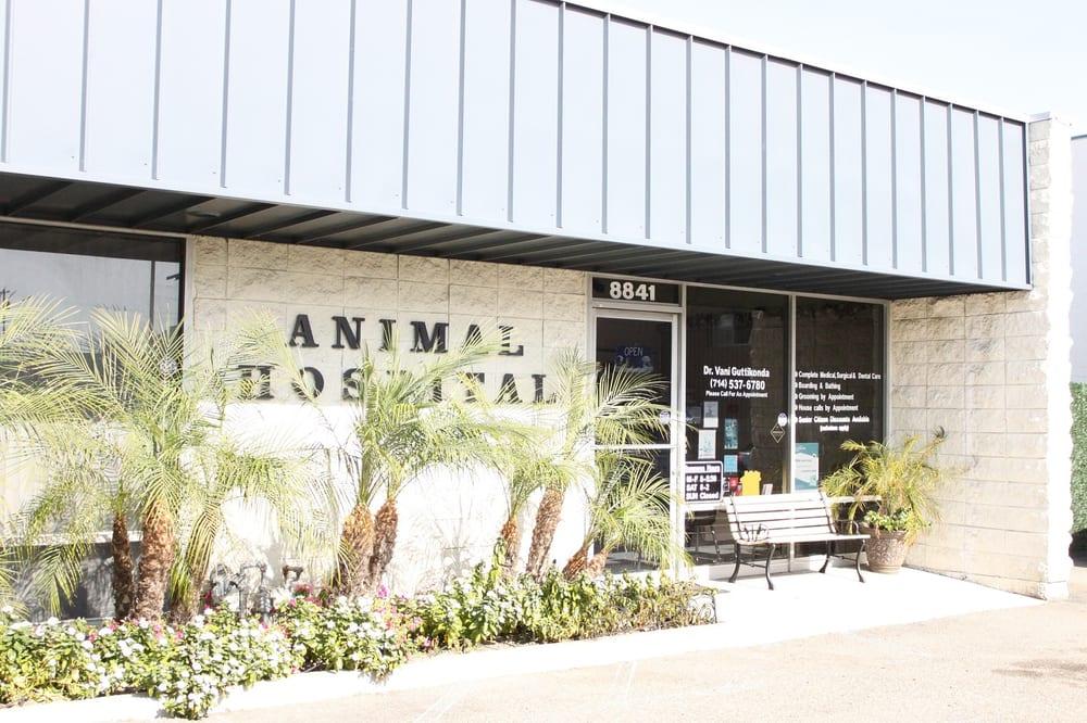 Photos For Boulevard Animal Hospital Yelp