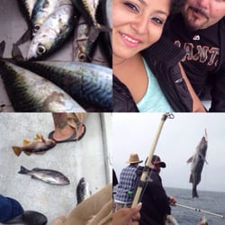 J & M's Sport Fishing - 95 Photos & 165 Reviews - Whale