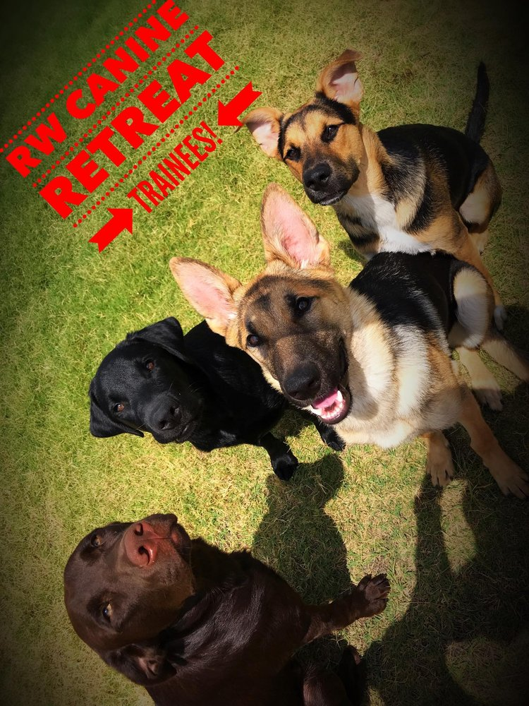 RW Canine Retreat: 1063 E Hapgood Dr, Bellevue, TX