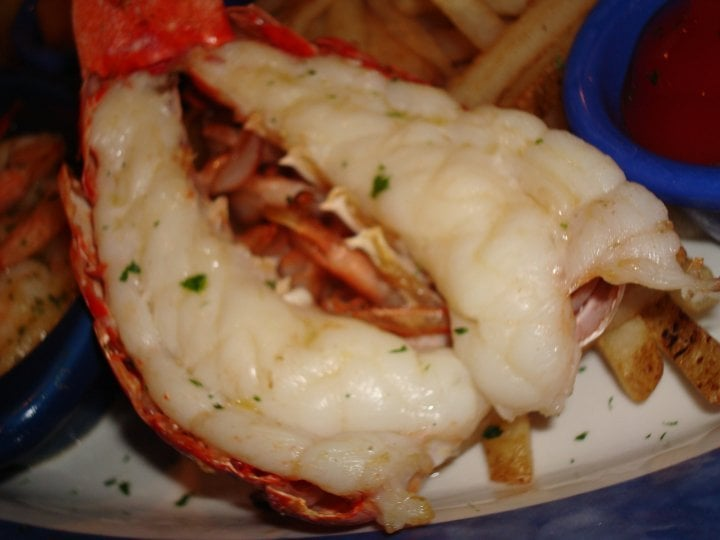 Maine lobster tail - Yelp