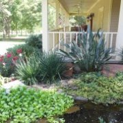 Photo Of All Seasons Nursery Landscaping Lafayette La United States