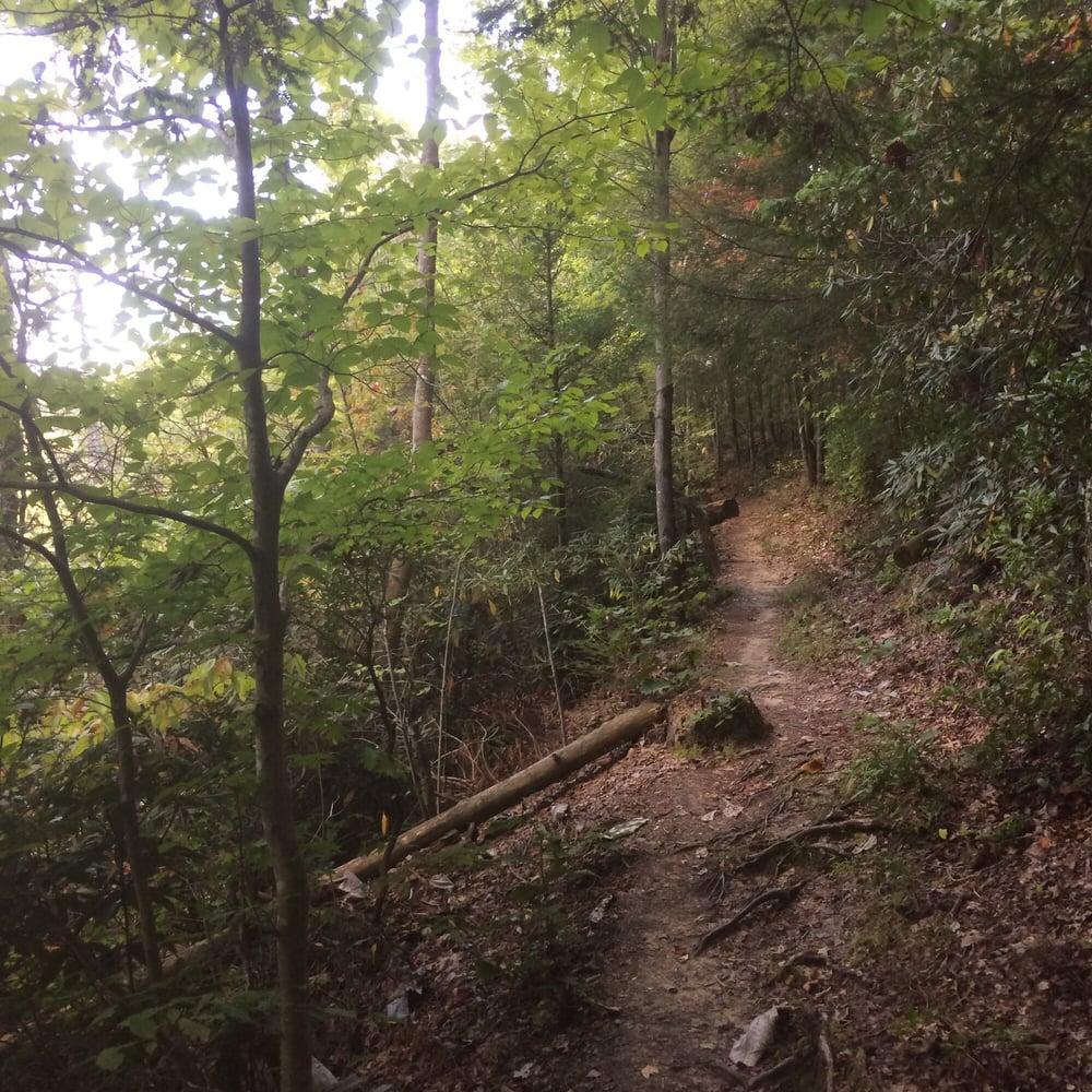 Koomer Ridge Campground: Pine Ridge, KY