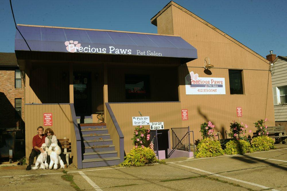 Precious Paws Pet Salon: 382 Carol Ave, Bridgeville, PA