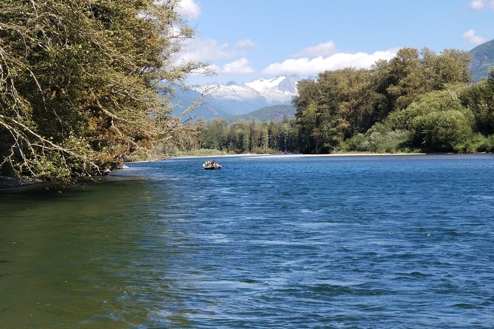 Skagit River Roadside Park: 55250 N Cascades Hwy, Concrete, WA