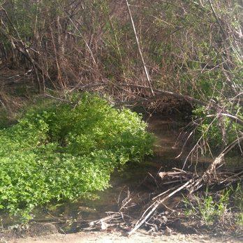 Rancho San Diego Kiwanis Memorial Trail Hiking 2879
