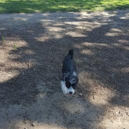 Lathrop Dog Park