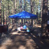 Photo of New Shady Rest Campgrounds - Mammoth Lakes, CA, United States. Bear
