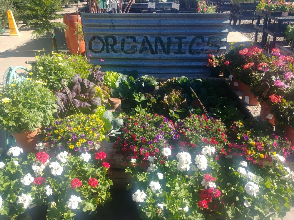 SummerWinds Nursery - West Bell: 6426 W Bell Rd, Glendale, AZ