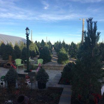 Photo Of Heidrich S Colorado Tree Farm Nursery Springs Co United States
