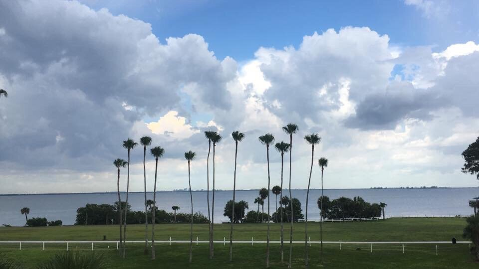 Photo of Safety Harbor Resort And Spa - Safety Harbor, FL, United States