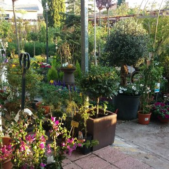 Centro de jardiner a arag n viveros y jardiner a - Centro de jardineria madrid ...
