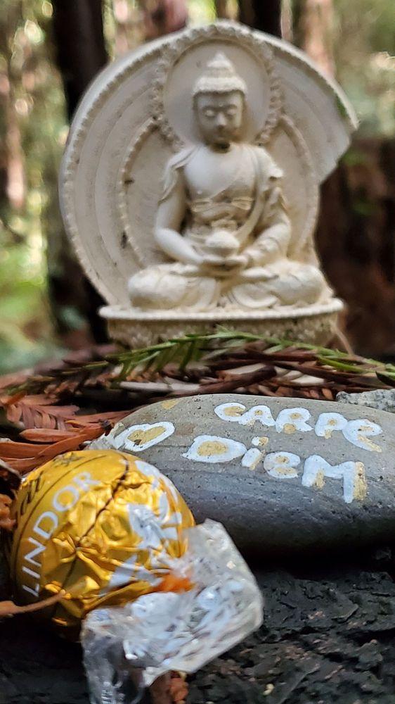 Land of Medicine Buddha Retreat Center: 5800 Prescott Rd, Soquel, CA