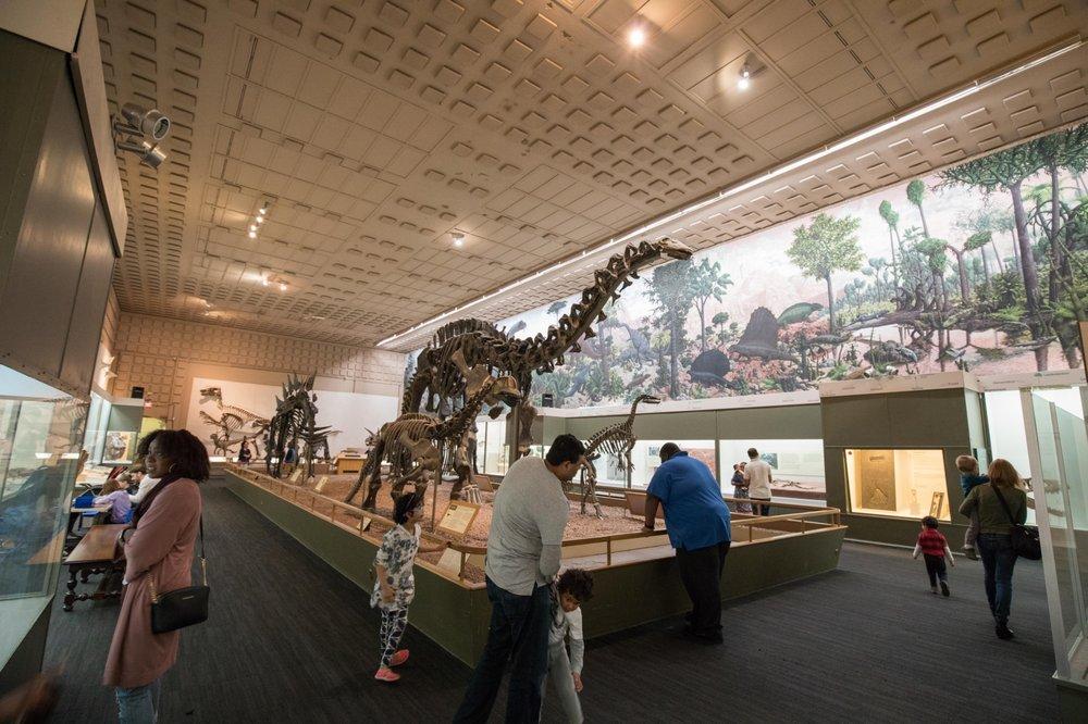 Foyer Museum Yelp : Dinosaur main hall yelp