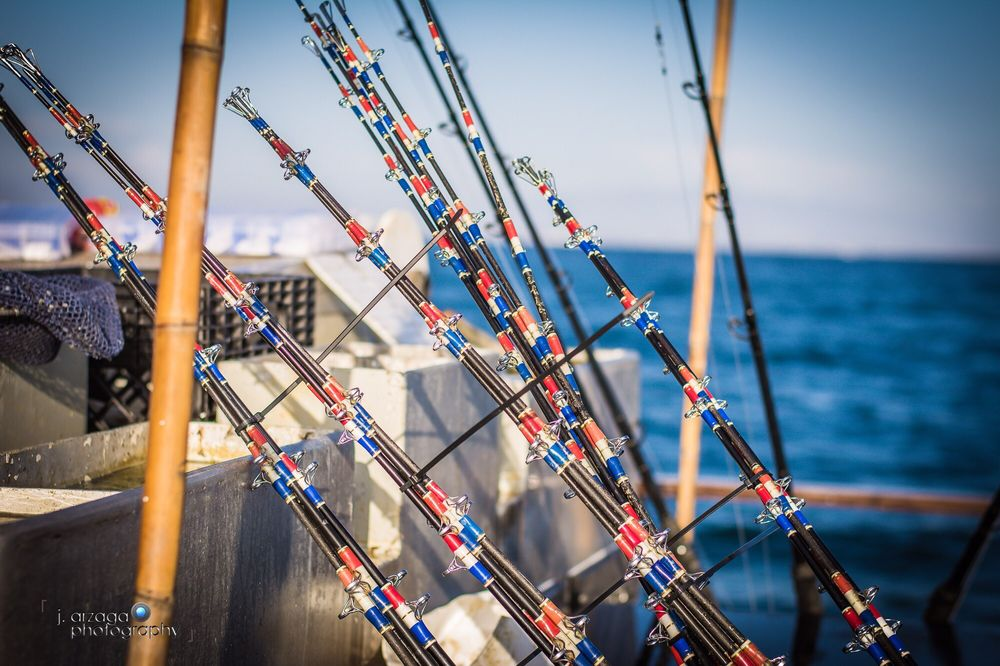 Point loma sportfishing 106 photos 138 reviews for Point loma fishing