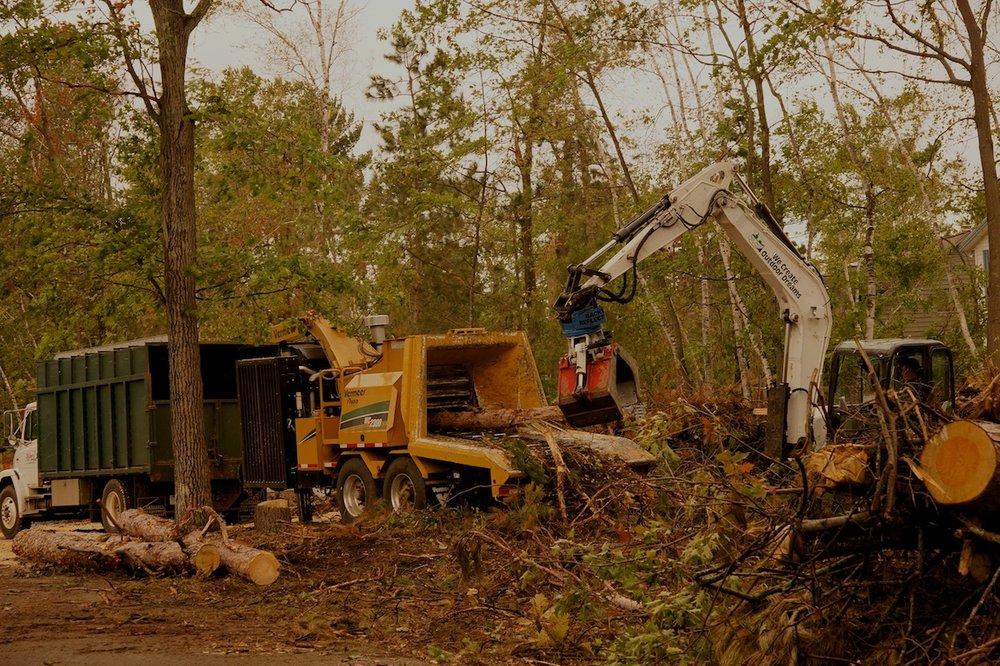 Mike's Tree Company: 5906 Pine Beach Rd, Brainerd, MN