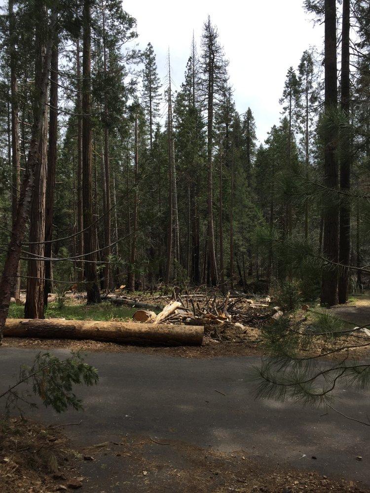 American Dimond O Camp Ground: 34660 Evergreen Rd, Yosemite Nationl Prk, CA