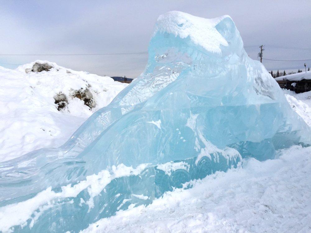 Social Spots from World Ice Art Championships