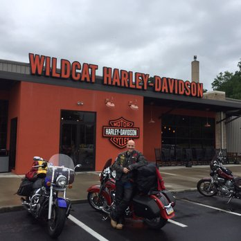 wildcat harley davidson - 29 photos - motorcycle dealers - 575 e