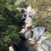 ... Photo Of Clark Botanic Garden   Albertson, NY, United States ...