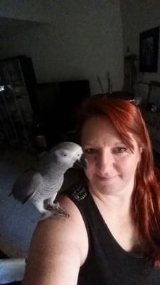 CFP Parrot Rescue - CLOSED - Pet Services - 3258 Farleton Ln