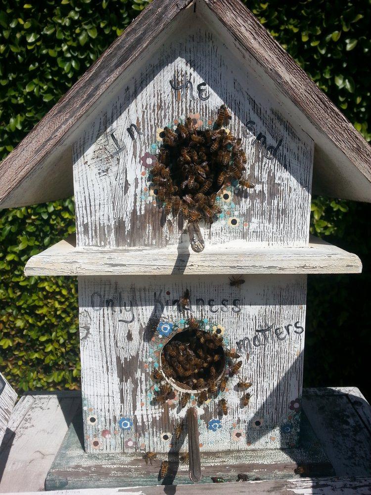 Cazadores de abejas