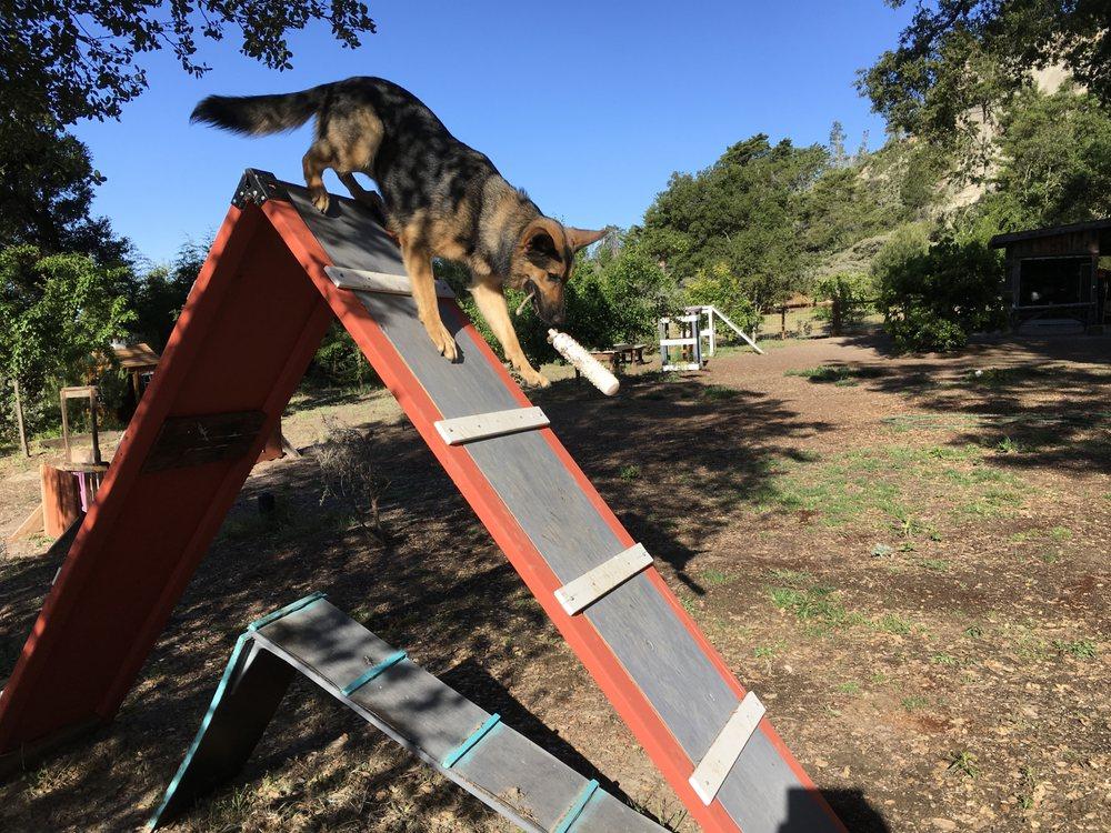 Woof Work Dog Training: 1005 Martin Rd, Santa Cruz, CA