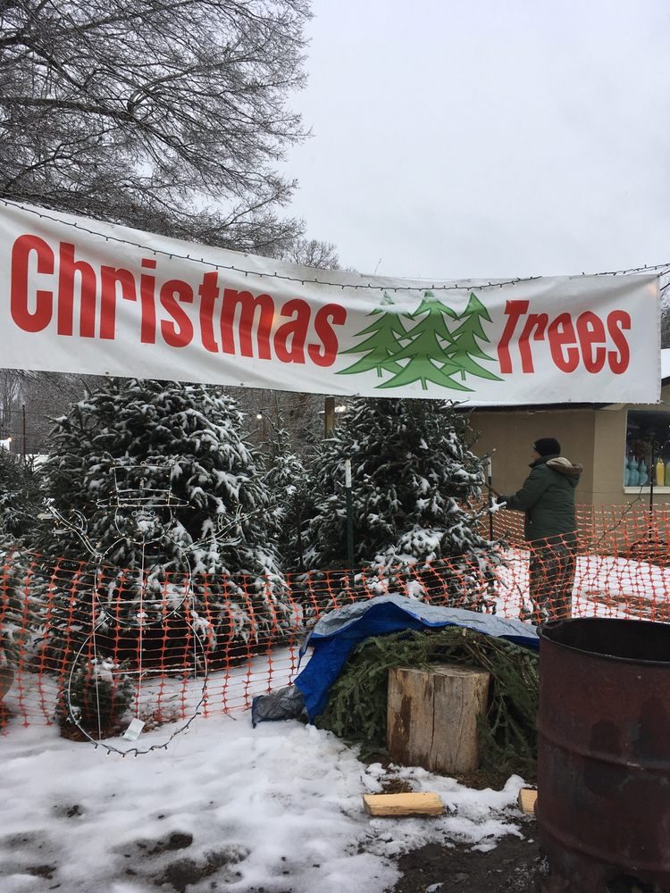 Mrs  Ruth's Christmas Tree Lot: 2206 Charlotte Hwy, Mooresville, NC