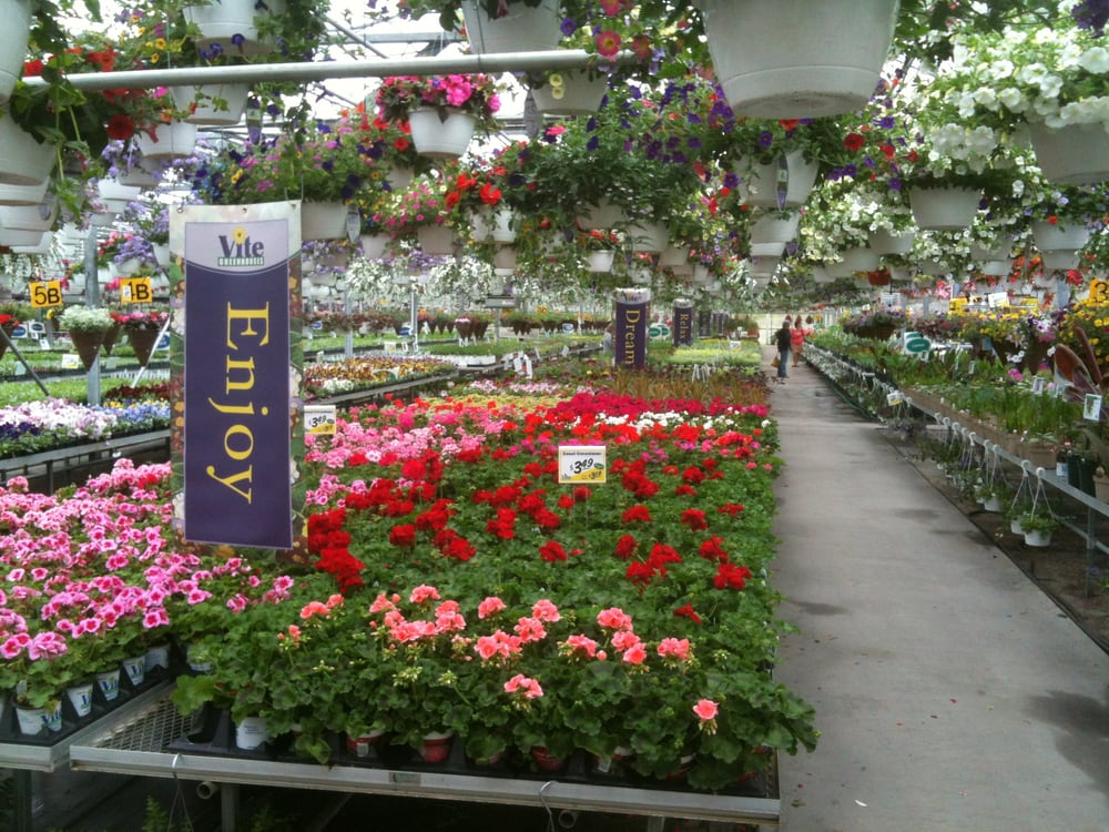 Vite Greenhouses - Nurseries & Gardening - 2610 Redbud Trl, Niles ...