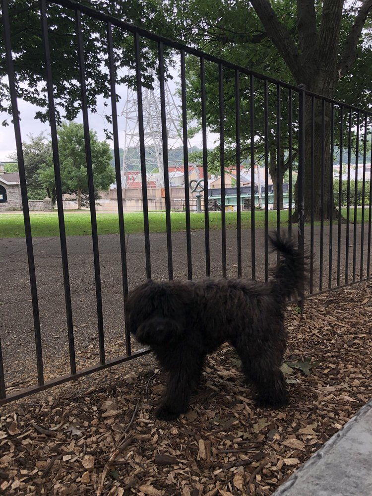 Manayunk Dog Park of Pretzel Park
