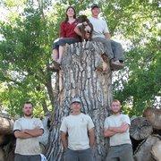 Reinholt Tree Care
