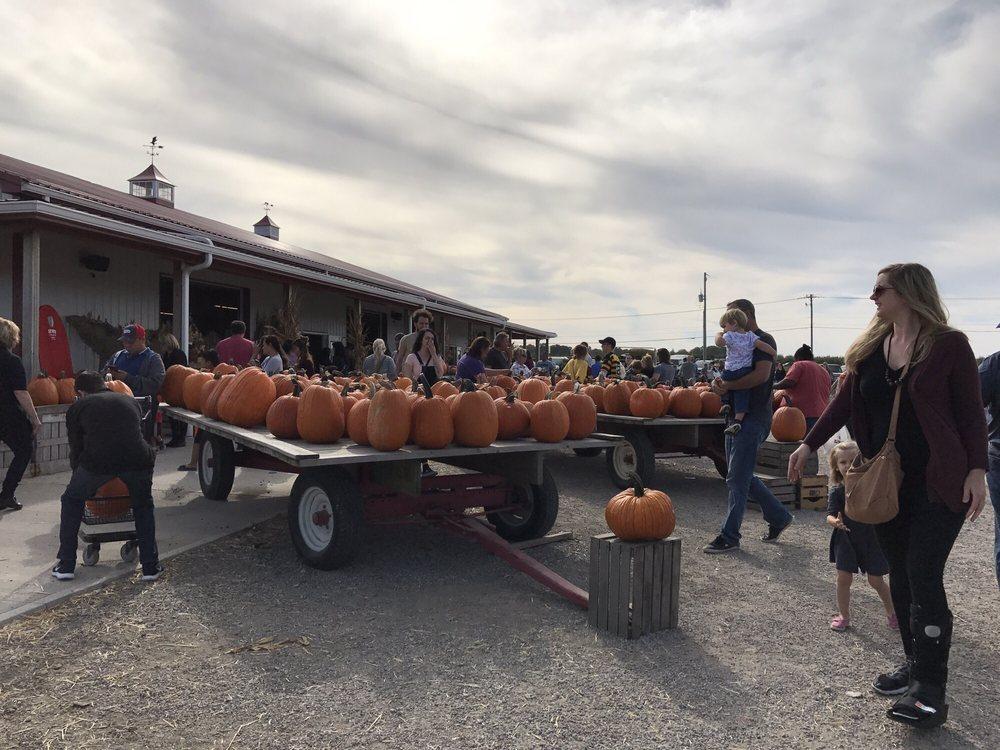 Lynd Fruit Farm: 9393 Morse Rd SW, Pataskala, OH