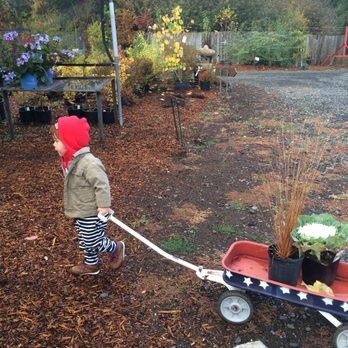 Photo Of Blue Moon Garden And Nursery Spokane Wa United States Handy
