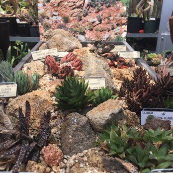 Photo Of UC Botanical Garden At Berkeley   Berkeley, CA, United States