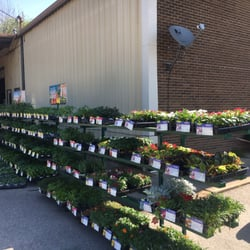 Superbe Photo Of Somerville Farm Supply   Somerville, TN, United States. Vegetables  Are Here