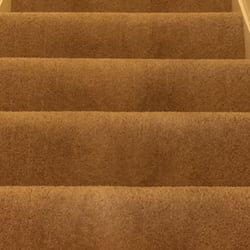 Washington Dc Carpet Cleaning