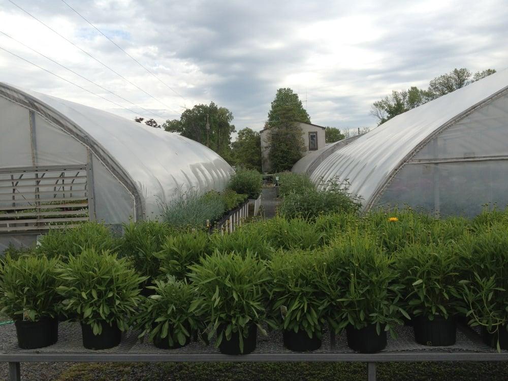 Williams Greenhouses & Nursery: 45865 Maries Rd, Sterling, VA